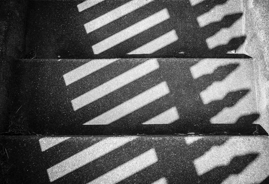 White Picket Shadows