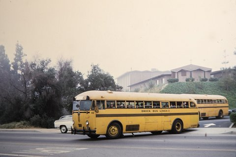 School Busses.